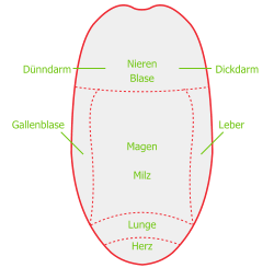 Grafik Zungendiagnostik